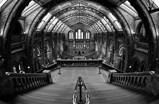 The Beauty of Architecture Photography: 40 Amazing Examples 27