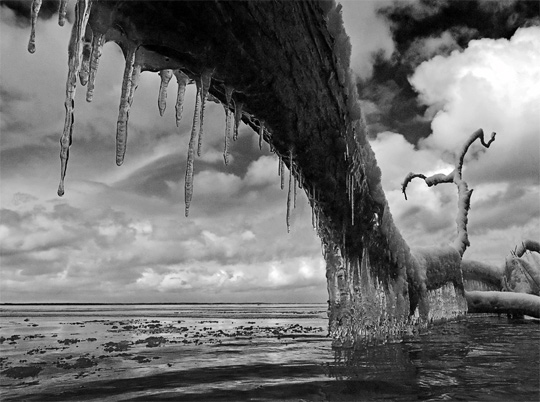 50+ Beautiful Black and White Photography 11