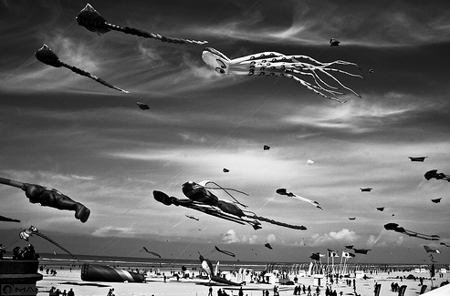 50+ Beautiful Black and White Photography 30