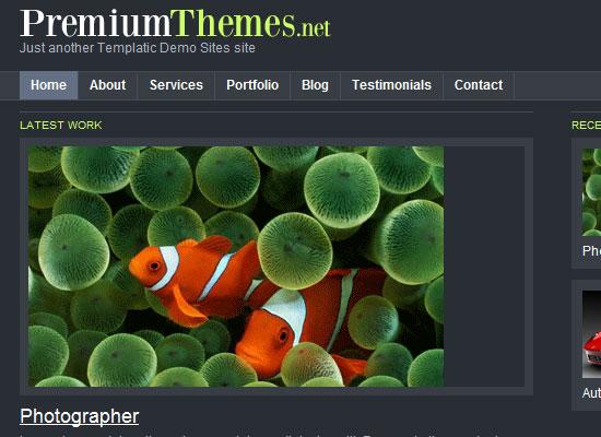 Best Premium Wordpress Themes Which are worth buying 10
