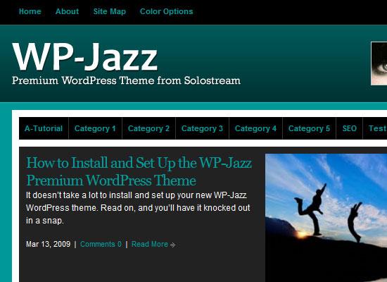 Best Premium Wordpress Themes Which are worth buying 15