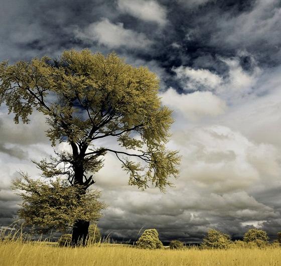 A Showcase of 20 Absolutely Amazing Landscape Photography 15