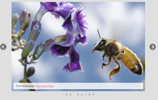 Exclusive Gallery of jQuery Plugins and Tutorials 2