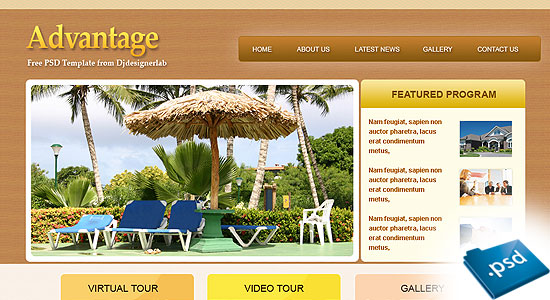 Free Download: Advantage – Website PSD Template