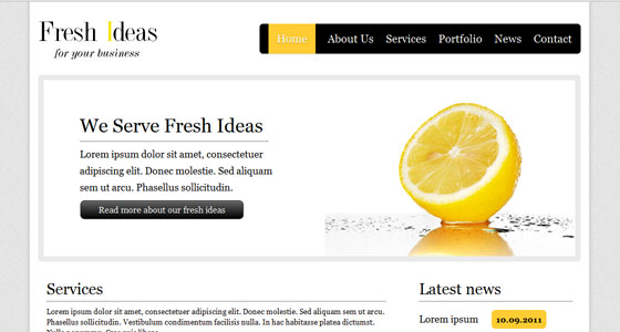 10 Amazing Free HTML5 and CSS3 Template 1