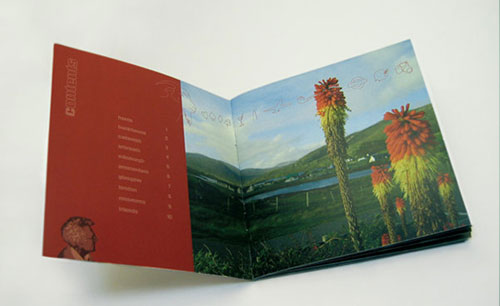 20 Beautiful Booklet Printing Design for Inspiration 15