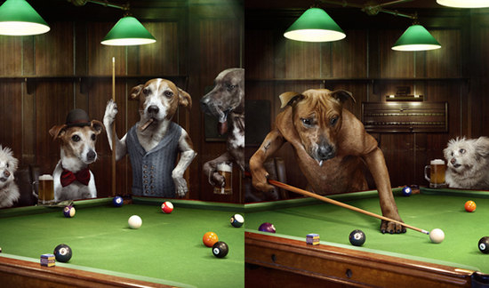 30+ Excellent Examples Of Photo Manipulation 30