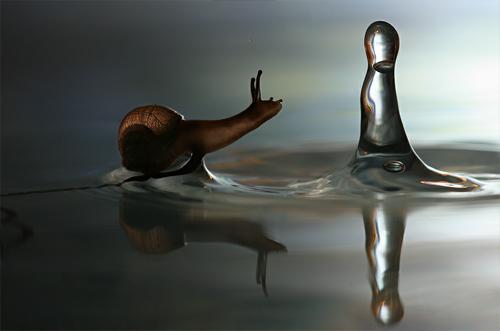 Amazing Photo Manipulation Arts 3