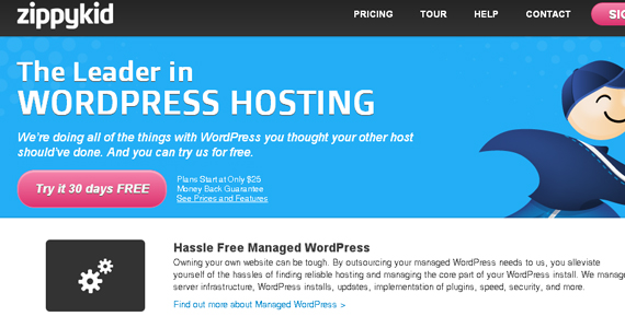 10 Best Options for Managed WordPress Hosting 3