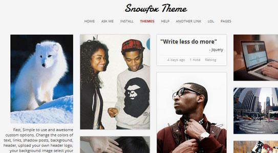 5 of the Best Premium Pinterest like Themes 3