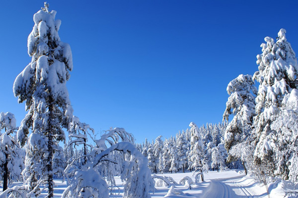20 Beautiful Winter Wallpaper for Desktop 1