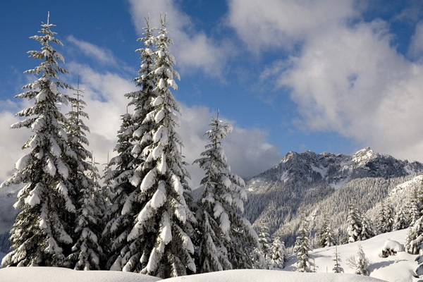 20 Beautiful Winter Wallpaper for Desktop 2