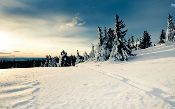 20 Beautiful Winter Wallpaper for Desktop 6