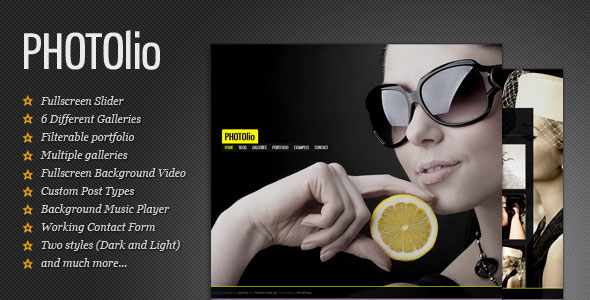 20 Perfect Premium WordPress Themes for Photographers