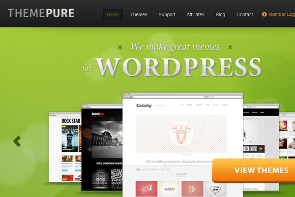 Ultimate Collection of Best Premium Wordpress Theme Store 10