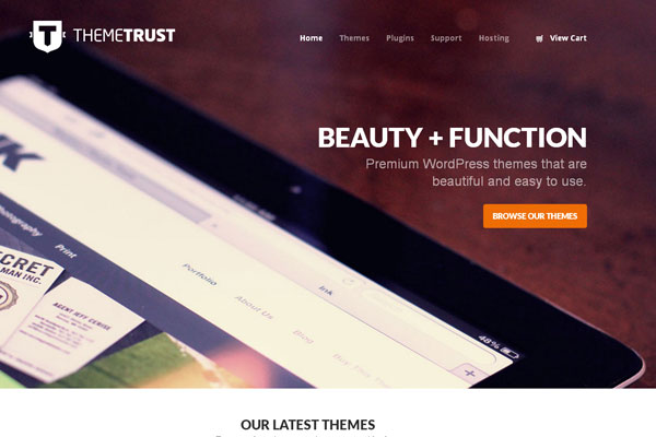 Ultimate Collection of Best Premium Wordpress Theme Store 14