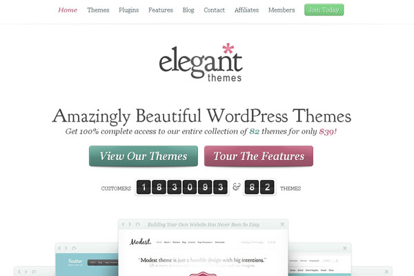 Ultimate Collection of Best Premium Wordpress Theme Store 5