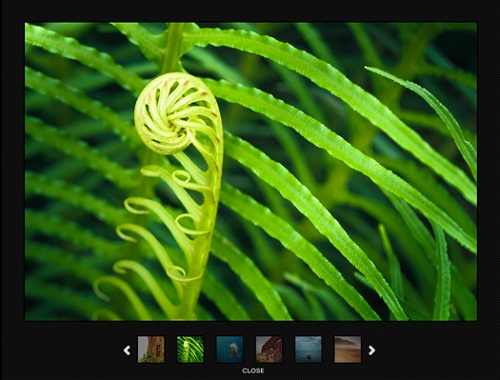 40 Top Level jQuery Image, Content Sliders and Slideshows 36