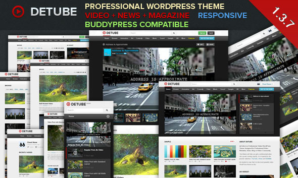 Top Downloading WordPress Video Sharing Themes -2013