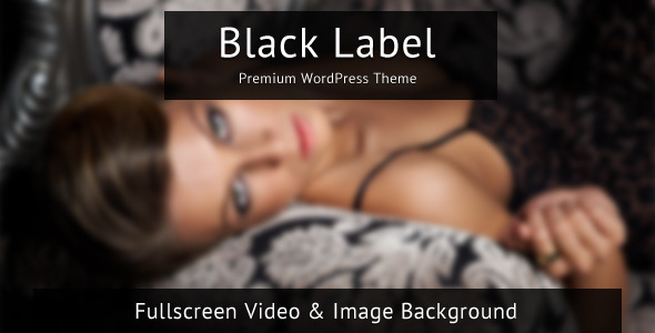 Top Downloading Wordpress Video Sharing Themes -2013 7