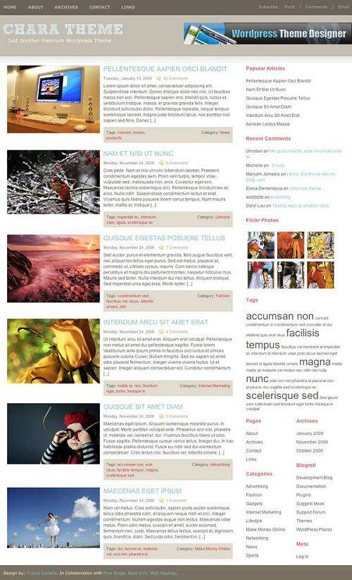 25 Free High Quality WordPress Themes 13