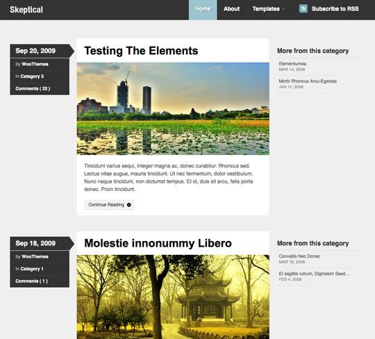 25 Free High Quality WordPress Themes 20