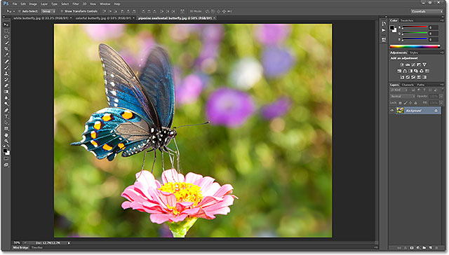 10 Most Essential Basic Tutorials for Photoshop Beginners 4