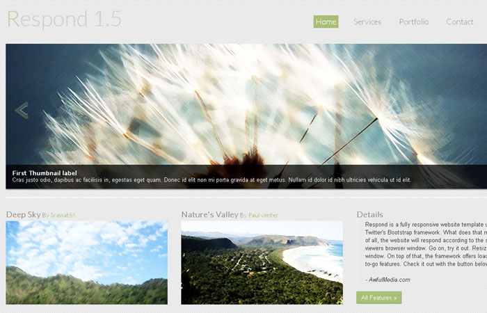 20 Free Responsive High Quality HTML/CSS Website Template 3