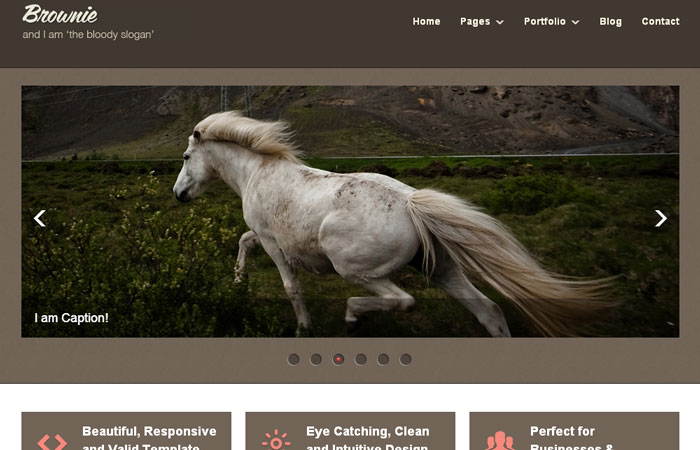 20 Free Responsive High Quality HTML/CSS Website Template 6