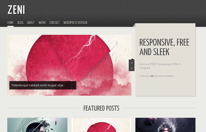 20 Free Responsive High Quality HTML/CSS Website Template 7