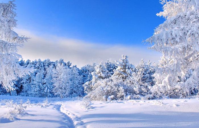 20 Wonderful Winter Wallpaper for Desktop 12