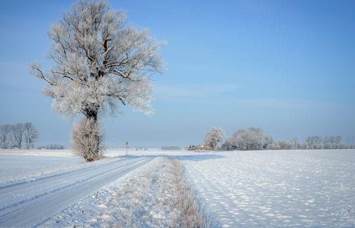 20 Wonderful Winter Wallpaper for Desktop 14