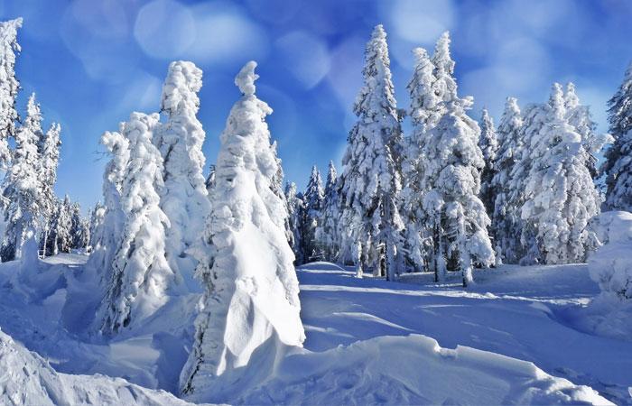 20 Wonderful Winter Wallpaper for Desktop 15