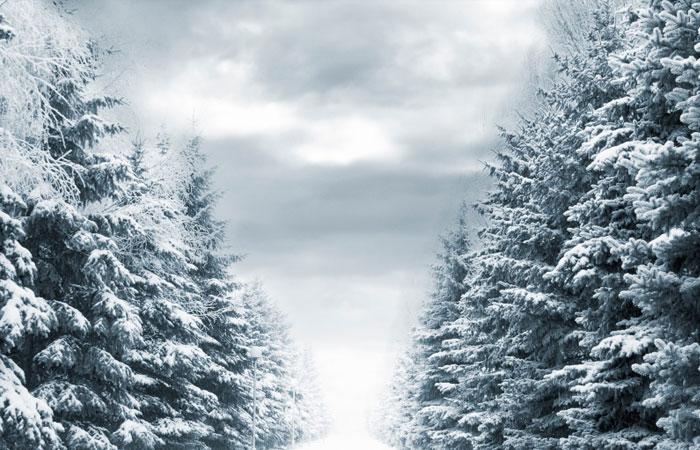 20 Wonderful Winter Wallpaper for Desktop 17