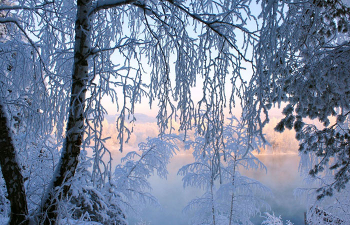 20 Wonderful Winter Wallpaper for Desktop 18