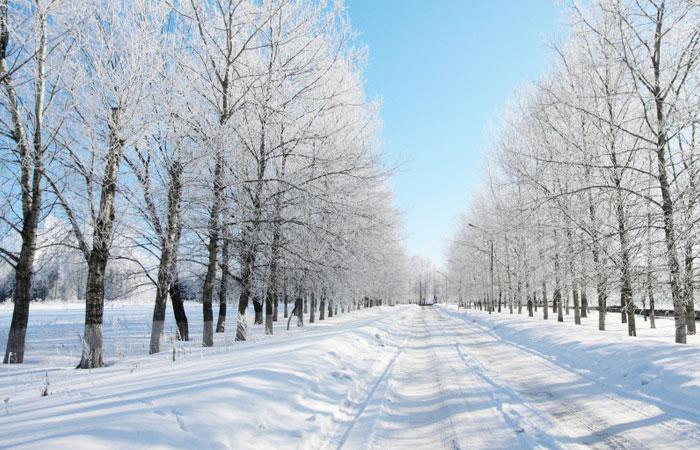 20 Wonderful Winter Wallpaper for Desktop 5