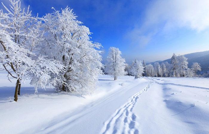 20 Wonderful Winter Wallpaper for Desktop 7