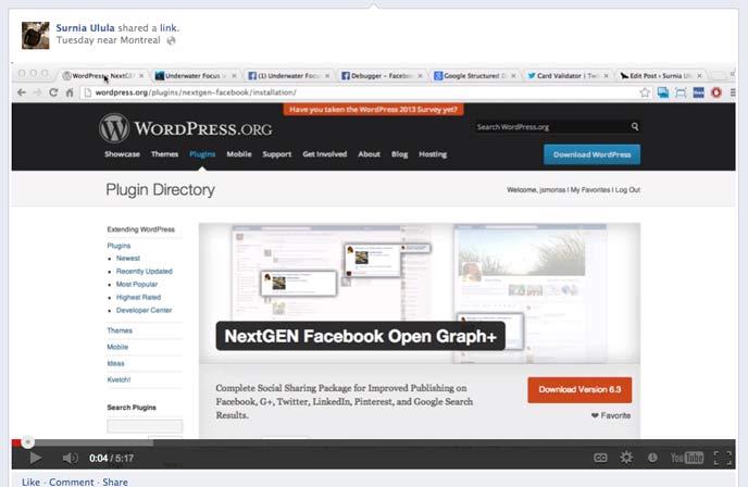 20 Useful Free and Premium Shortcode Plugins for WordPress 11