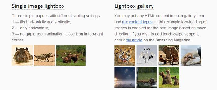 10 Effective jQuery Lightbox Plugins 6