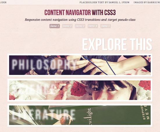 20 Best Responsive Web Design Tutorial for Web Designers 13