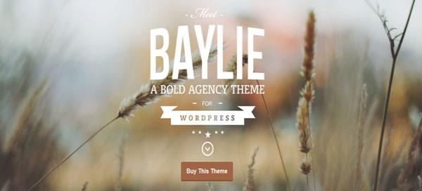 15 Stunning Parallax WordPress Themes to Inspire You