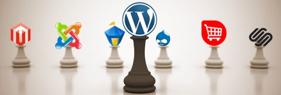 Why WordPress Has Edge over Other CMS?