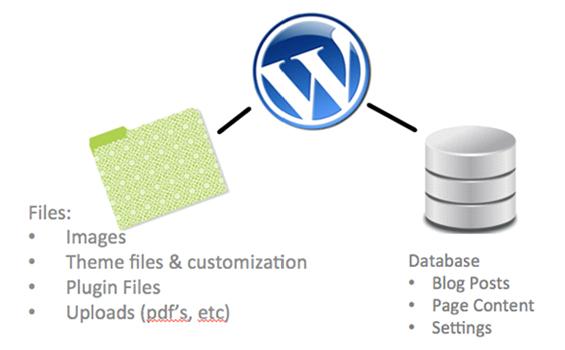 Effortless management of your WordPress database