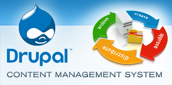 6 Reasons to Choose Drupal as Your CMS Platform