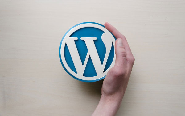 7 Must Have WordPress Plugins for eCommerce Sites